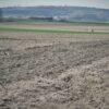 """CDU Statement zum Lisdorfer Berg: """"Keine Grünflächen sondern intensiv beackerte Sandböden"""""""